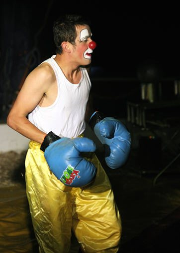 Clumbsy the Clown Boxer